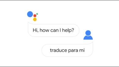 1607698388 Cum se foloseste modul de interpret al Asistentului Google