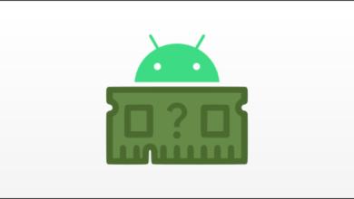 1607871695 Cum sa vedeti cata memorie RAM are telefonul dvs Android