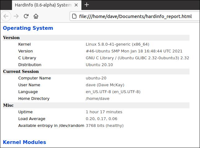 raport hardinfo HTML într-un browser web
