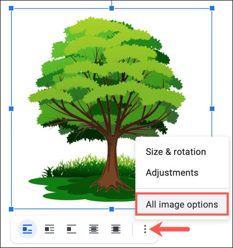Faceți clic pe cele trei puncte și alegeți Toate opțiunile de imagine