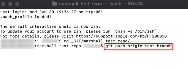 Rulați comanda pentru a vă împinge ramura către GitHub.