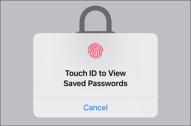 Folosiți Face ID sau Touch ID pentru a accesa și vizualiza parolele salvate.