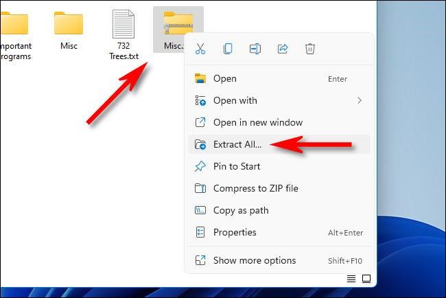 """Faceți clic dreapta pe fișierul ZIP și selectați """"Extrage tot."""""""