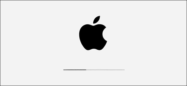 Sigla Apple și bara de progres a instalării în iPadOS.